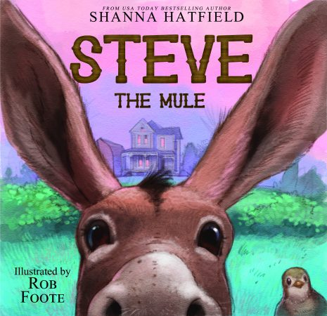 Cover Steve the Mule