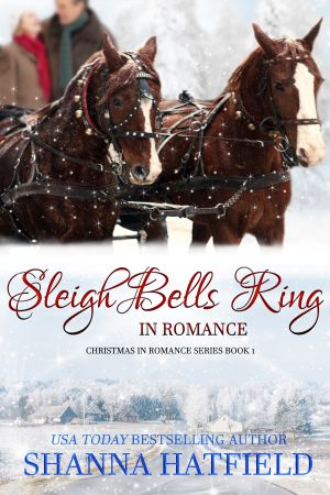 Sleigh Bells Ring cover